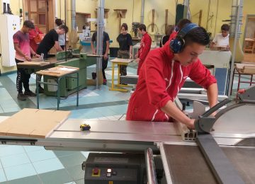 SAPELLI Interim recrute dans le secteur du bois