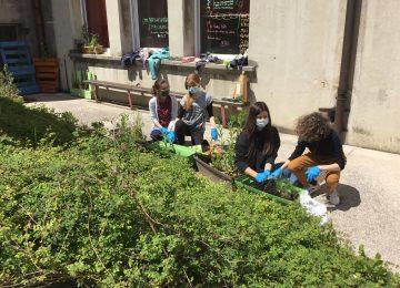 E3D c'est l'exposition «Jardiner naturellement» et les ateliers Jardinage «ça pousse à St Jo»
