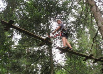 Voyage des 6D dans les branches…