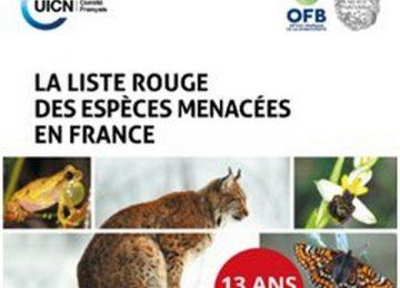 Biodiversité : 2430 espèces menacées en France selon la Liste rouge