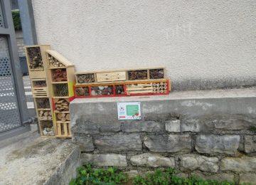 E3D : l'atelier nichoirs à oiseaux et hôtels à insectes