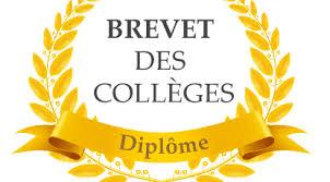 3ème : Brevet 2019 / Epreuve orale du 29 mai 2019